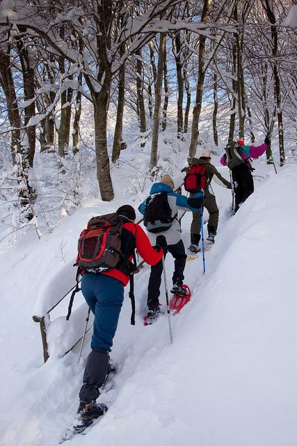 Attività invernali alternative in Piemonte
