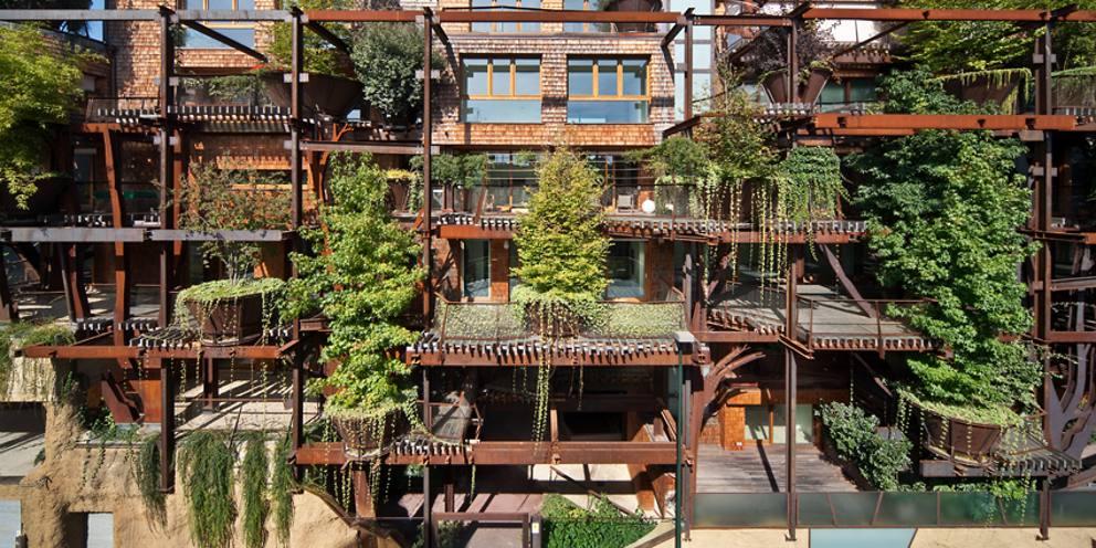 25 verde, ovvero una foresta portata nel cuore della città per una casa ultraecologica