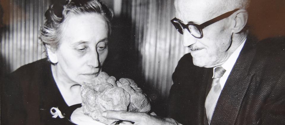 Giacomo Morra, l'uomo che ha rivoluzionato il mondo del tartufo bianco di Alba