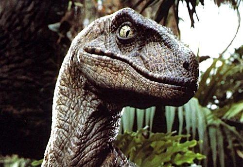 velociraptor-052912