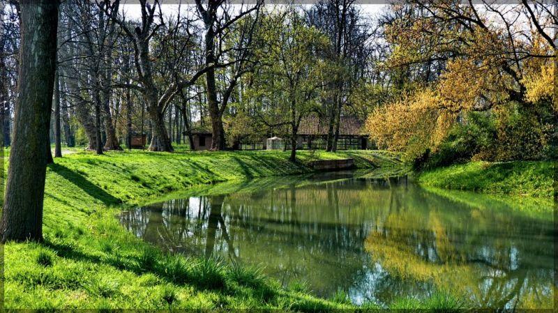 Uno scorcio del giardino all'inglese del castello di Racconigi