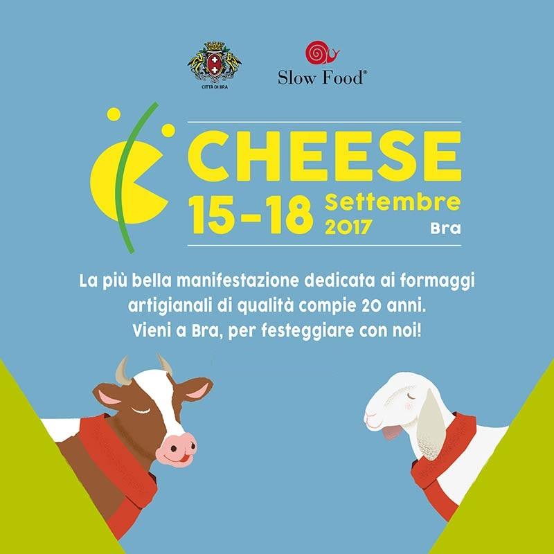 cheese_bra