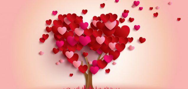 san valentino piemonte proposte pacchetti
