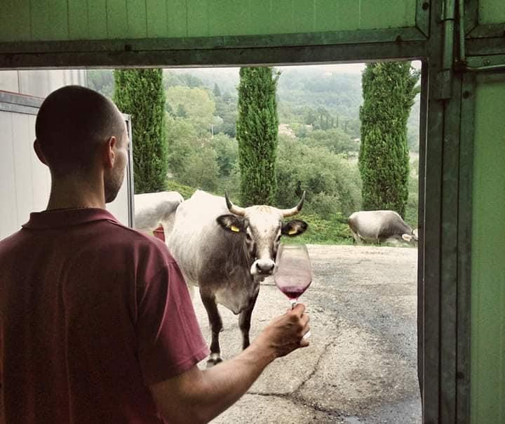 Torino Beve Bene